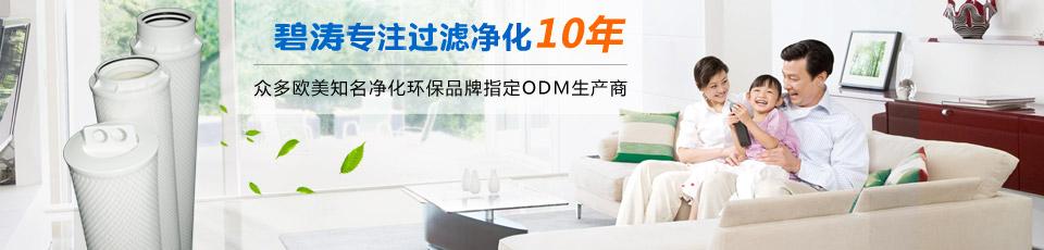 碧涛专注过滤净化10年!